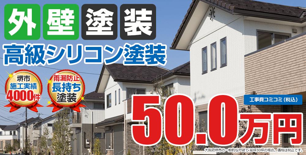 高級シリコン塗装塗装 50.0万円